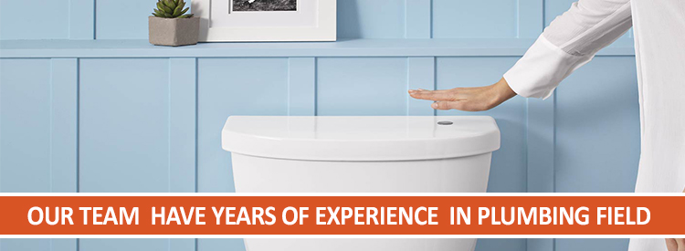 Professional Toilet Repairs  Sunbury
